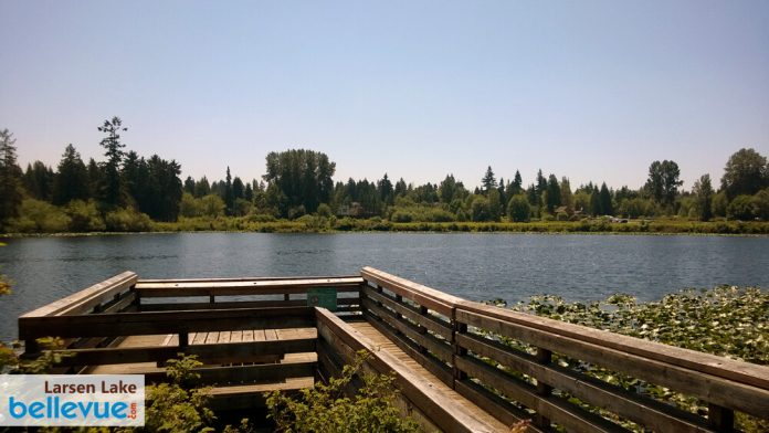 Larsen Lake Blueberry Farm